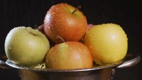 Σε αργή κίνηση κόκκινα μήλα που πλένονται κάτω από τη βρύση απόθεμα βίντεο