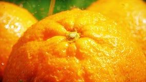 Σε αργή κίνηση μακρο πυροβολισμός των παφλασμών νερού στο πορτοκάλι φιλμ μικρού μήκους
