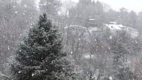 Σε αργή κίνηση μιας πτώσης ισχυρής χιονόπτωσης φιλμ μικρού μήκους