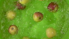 Σε αργή κίνηση πτώση μήλων σε ένα εμπορευματοκιβώτιο της τοπ άποψης νερού απόθεμα βίντεο