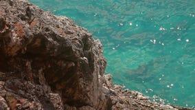 Σε αργή κίνηση πυροβολισμός του κυματισμού θάλασσας μια ηλιόλουστη ημέρα απόθεμα βίντεο
