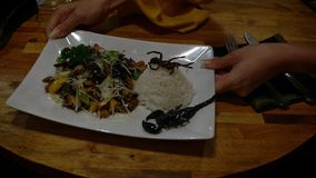 Σε αργή κίνηση σερβιτόρος γυναικών που στον πελάτη τα ζωύφια πιάτων στο ασιατικό εστιατόριο απόθεμα βίντεο