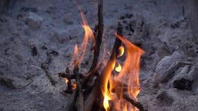 Σε αργή κίνηση τηλεοπτικό υπόβαθρο πυρκαγιάς απόθεμα βίντεο