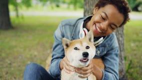Σε αργή κίνηση της αγάπης του ιδιοκτήτη κατοικίδιων ζώων κοριτσιών αφροαμερικάνων που κτυπά τη γούνα του ανησυχίας σκυλιών στο λα απόθεμα βίντεο