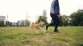 Σε αργή κίνηση του τρεξίματος ιδιοκτητών σκυλιών αγάπης νεαρών άνδρων με το κουτάβι στο πάρκο πόλεων, το ευτυχές κατοικίδιο ζώο α απόθεμα βίντεο