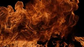 Σε αργή κίνηση του φυσήματος πυρκαγιάς απόθεμα βίντεο