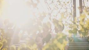 Σε αργή κίνηση χαλαρωμένη ρομαντική συνεδρίαση ζευγών κοντά και μιλώντας σε έναν πάγκο σε ένα όμορφο πάρκο θερινού ηλιοβασιλέματο φιλμ μικρού μήκους