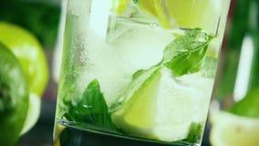 Σε αργή κίνηση χύστε τη βότκα σε ένα ποτήρι με τον πάγο, τα εσπεριδοειδή και τη μέντα φιλμ μικρού μήκους