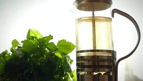 Σε αργή κίνηση teapot γυαλιού με το ανθίζοντας τσάι απόθεμα βίντεο