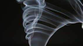 ΣΕ ΑΡΓΗ ΚΊΝΗΣΗ: Χαριτωμένος σγουρός του καπνού σε ένα μαύρο υπόβαθρο απόθεμα βίντεο