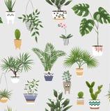 Σε δοχείο εγκαταστάσεις και λουλούδια στα διαφορετικούς δοχεία και τους καλλιεργητές διάνυσμα απεικόνιση αποθεμάτων