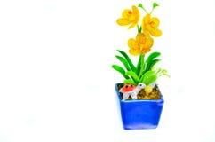 Σε δοχείο λουλούδια. Στοκ Εικόνες