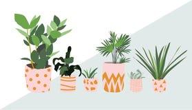 Σε δοχείο συλλογή εγκαταστάσεων succulents και εγκαταστάσεις σπιτιών συρμένη χέρι διανυσματική τέχνη στοκ εικόνες
