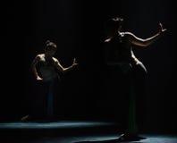 Σεληνόφωτο και ο σκιά-εθνικός λαϊκός χορός Στοκ φωτογραφία με δικαίωμα ελεύθερης χρήσης