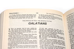 Ιερή Βίβλος Στοκ Εικόνες