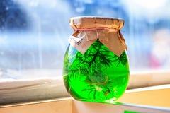 Σε μια μαρμελάδα βάζων γυαλιού, ιουνίπερος πράσινος στοκ εικόνες