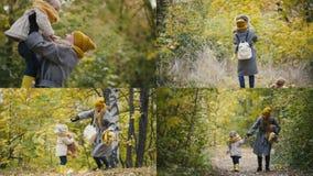 4 σε 1: Μια νέα μητέρα με μια κόρη στο δάσος φθινοπώρου απόθεμα βίντεο