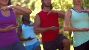 Σε υψηλό - ομάδα ικανότητας ποιοτικού σχήματος που κάνει tai chi στο πάρκο απόθεμα βίντεο