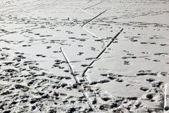 Σημάδια ίχνους και ίχνη και σημάδια σκι στο χιονισμένο τοπίο στο ST Moritz Ελβετία Στοκ φωτογραφίες με δικαίωμα ελεύθερης χρήσης