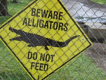 Σημάδι αλλιγατόρων Beware στοκ φωτογραφίες με δικαίωμα ελεύθερης χρήσης