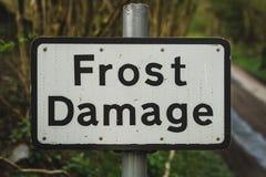 Σημάδι: Ζημία παγετού στοκ εικόνα με δικαίωμα ελεύθερης χρήσης