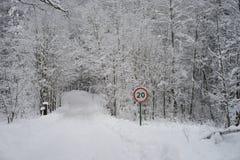 Σημάδι κυκλοφορίας στο δασικό σύνολο του χιονιού Στοκ φωτογραφία με δικαίωμα ελεύθερης χρήσης