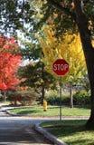 Σημάδι στάσεων και κίτρινο στόμιο υδροληψίας πυρκαγιάς στη διατομή στην κατοικημένη γειτονιά με τα φωτεινά δέντρα πτώσης στο υπόβ στοκ φωτογραφίες με δικαίωμα ελεύθερης χρήσης