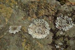 Σημάδια βράχου Στοκ Εικόνες