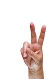σημάδι ειρήνης Στοκ εικόνες με δικαίωμα ελεύθερης χρήσης