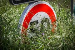 Σημάδι ορίου ταχύτητας που κρύβεται κατά το ήμισυ από τη χλόη Στοκ εικόνες με δικαίωμα ελεύθερης χρήσης