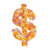 Σημάδι δολαρίων φιαγμένο από λουλούδι αχύρου Στοκ Φωτογραφίες
