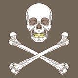 Σημάδι πειρατών καφετί Στοκ εικόνα με δικαίωμα ελεύθερης χρήσης