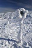 Σημάδι που καλύπτεται με τον παγετό Στοκ Εικόνες