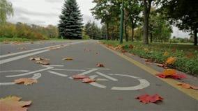 Σημάδι ποδηλάτων στο δρόμο Φθινόπωρο Κλείστε επάνω, οριζόντιος πυροβολισμός ολισθαινόντων ρυθμιστών απόθεμα βίντεο