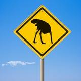 Σημάδι στρουθοκαμήλων προσοχής κίτρινο οδικό μπροστά Στοκ φωτογραφίες με δικαίωμα ελεύθερης χρήσης