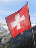 σημαία Ελβετός Στοκ Εικόνες