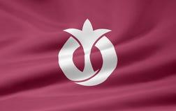 σημαία Ιαπωνία aichi Στοκ Εικόνα