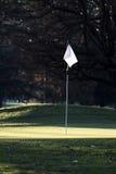 Σημαία και Πολωνός στο γήπεδο του γκολφ πράσινο Στοκ Εικόνες