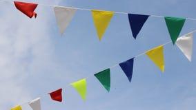 Σημαία καρναβαλιού απόθεμα βίντεο