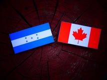 Σημαία Ονδουριανών με την καναδική σημαία σε ένα κολόβωμα δέντρων που απομονώνεται Στοκ φωτογραφία με δικαίωμα ελεύθερης χρήσης