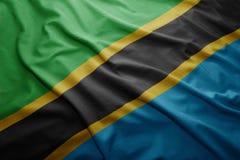 σημαία Τανζανία Στοκ Εικόνα