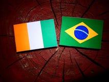Σημαία της Ακτής του Ελεφαντοστού με τη βραζιλιάνα σημαία σε ένα κολόβωμα δέντρων που απομονώνεται στοκ φωτογραφία με δικαίωμα ελεύθερης χρήσης