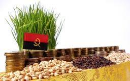 Σημαία της Ανγκόλα που κυματίζει με το σωρό των νομισμάτων χρημάτων και τους σωρούς των σπόρων Στοκ Φωτογραφίες