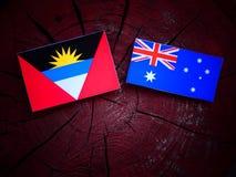 Σημαία της Αντίγκουα και της Μπαρμπούντα με την αυστραλιανή σημαία σε ένα κολόβωμα δέντρων που απομονώνεται Στοκ Εικόνες