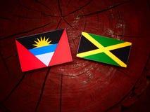 Σημαία της Αντίγκουα και της Μπαρμπούντα με την τζαμαϊκανή σημαία σε ένα isol κολοβωμάτων δέντρων Στοκ Φωτογραφίες