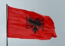 Σημαία της Αλβανίας Στοκ φωτογραφίες με δικαίωμα ελεύθερης χρήσης