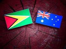 Σημαία της Γουιάνας με την αυστραλιανή σημαία σε ένα κολόβωμα δέντρων που απομονώνεται Στοκ Φωτογραφία