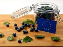 Σημαία της ΕΕ σε μια ξύλινη σανίδα με τα βακκίνια στο λευκό Στοκ Εικόνες