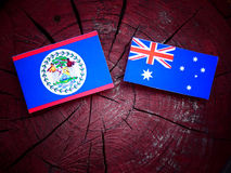 Σημαία της Μπελίζ με την αυστραλιανή σημαία σε ένα κολόβωμα δέντρων που απομονώνεται Στοκ φωτογραφία με δικαίωμα ελεύθερης χρήσης