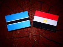 Σημαία της Μποτσουάνα με την αιγυπτιακή σημαία σε ένα κολόβωμα δέντρων που απομονώνεται Στοκ εικόνες με δικαίωμα ελεύθερης χρήσης
